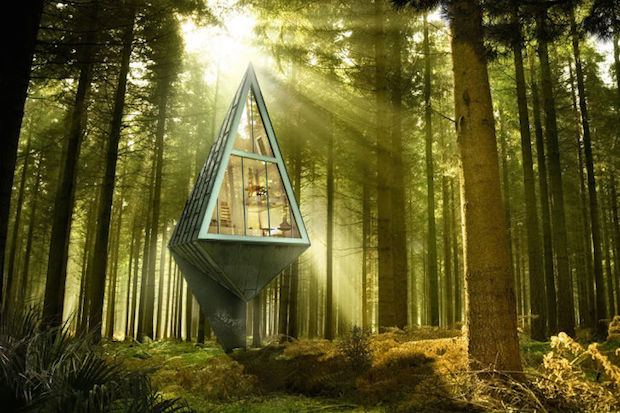 こんなお家は見たことない!共生を絵に描いた住まい「PRIMEVAL SYMBIOSIS」