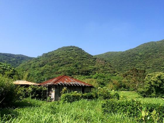 朽ち果てた空き家を見ると切ないもの。嘉入集落はとても美しい場所ですが、こういった家もちらほら見られます。