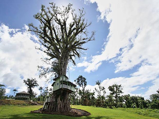 木のうろに住むってこんな感じ?バンヤンツリーに建てられたツリーハウスホテル「Lupe Sina Treesort」