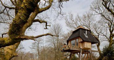 森の中の非日常、ひっそり佇む小さな小屋「Hut on Stilts」