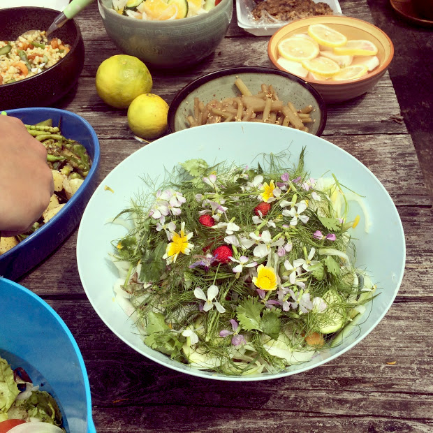 庭でとれたハーブなどでつくったサラダ。春菊や大根、菜の花とハーブがいっぱい