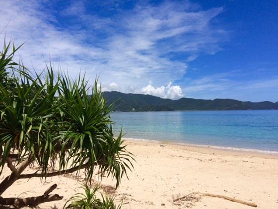 第21回:美しい島で、自由に働く|女子的リアル離島暮らし