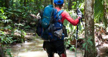 第1回:日常から、一歩踏み出せばそこはジャングル|元新聞記者の、非日常生活。<ジャングルを走る編>