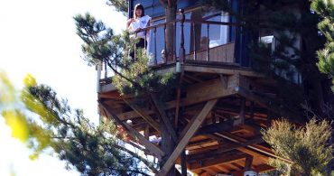 絶景を見ながら湯船につかる、空中露天風呂があるツリーハウス「Tree Bach in New Zealand」