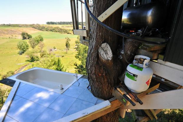 tree-bach-in-NZ-tub05