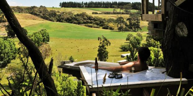 tree-bach-in-NZ-tub06