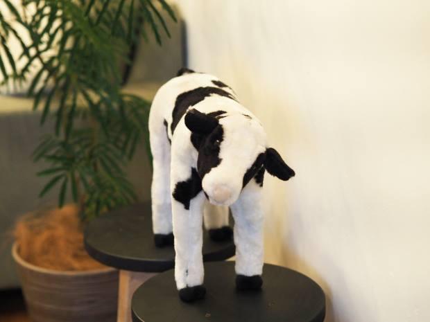 部屋の一角には牛が