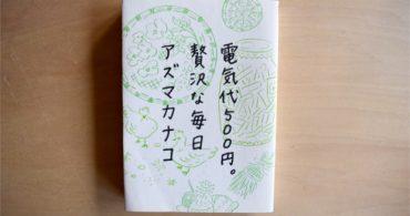 【書評】贅沢な生活に電気は必要ないのか?「電気代500円。贅沢な毎日」|YADOKARIの本棚
