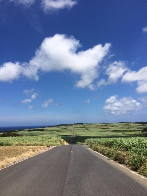 こちらは喜界島の景勝地、さとうきび畑の中の一本道。島から海と空が一望できる場所です。