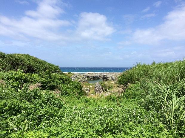 喜界島の秘密のビーチに続く道。島在住の方と出会えたからこそ教えてもらえた場所でした。