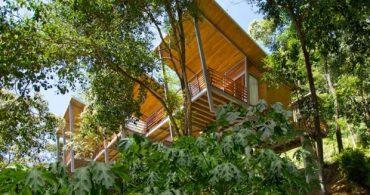 丘の中腹に立つ、森と同化した隠れ家「Casa Flotanta」