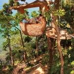 巨大なココナッツ?空飛ぶウェイターがいるレストラン「Treepod Dining」
