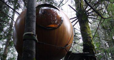 【インタビュー】カナダにある球体ツリーハウス「Free Spirit Spheres」に行ってきた