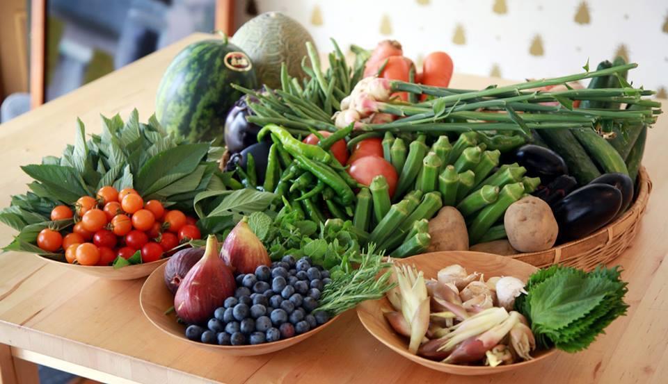 南房総でとれた野菜を朝のうちに調理する