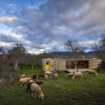 羊の群れを眺めながらのんびりと。スペインのモダンな小屋「Four Seasons House」