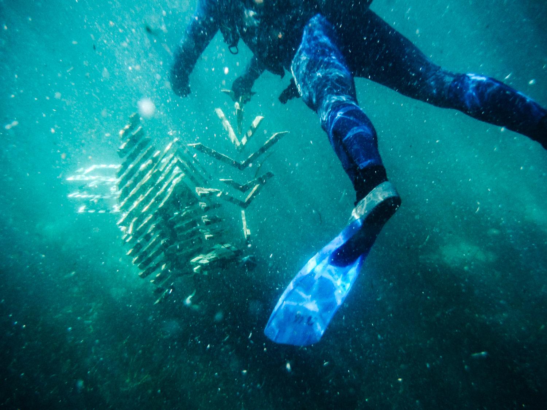 素潜りでの撮影によって海中インスタレーションを捉える