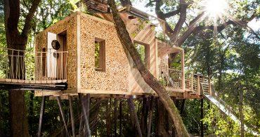 英国式ラグジュアリーツリーハウスへようこそ。木のぬくもりを感じるツリーハウス
