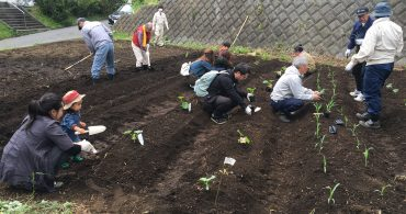 #07 団地の菜園活動に参加しました!夏野菜の種蒔き・苗植え編