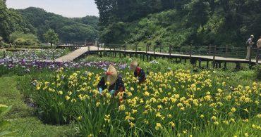 #13 晴れた日は公園へ行こう!二宮団地の近所のオススメ公園をご紹介 YADOKARI✕公社二宮団地