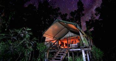 どうぶつの森でぐっすり眠る。Paperbark Campの自然にとけ込むグランピング