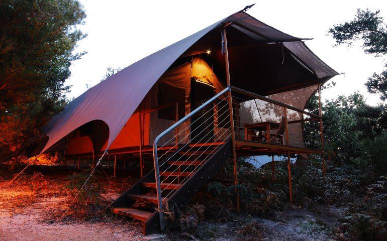 オーストラリア、野生動物が住むグランピング場
