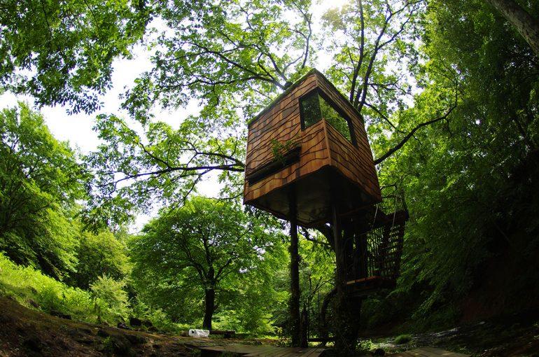 キャンプは木の上のしずくの中で?ドロップ型ツリーテントのススメ