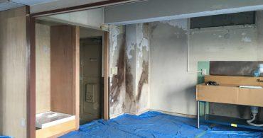#36 動画で見るリノベの現場!前編〈壁・天井の塗装〉