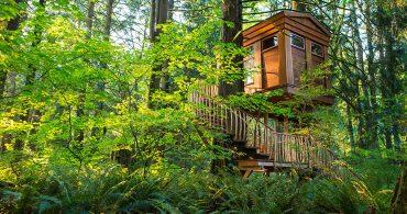 大好きなあの人と泊まりたい。TreeHouse Pointのロマンティックなツリーハウス