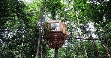 ミノムシ型ツリーハウスでモダンな暮らしを「ORIGIN tree house」
