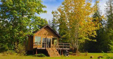 自然が癒してくれる。木のぬくもりを感じるミニマルな「池の別荘」