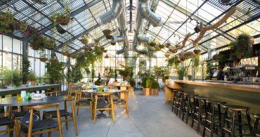ヴィーガンとインスタ時代のレストラン。ロサンゼルスの温室食堂「コミッサリー」