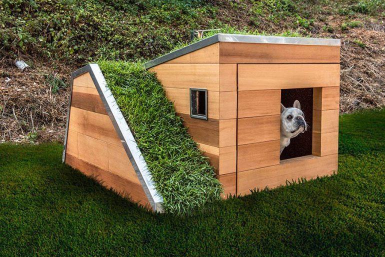 ソーラーパワーで夏でも涼しい。グリーンルーフの夢の犬小屋
