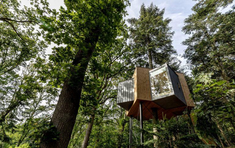 デンマークの森に佇む。ツリーハウスホテル「 løvtag hotel 」