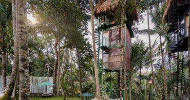 バリの極上ツリーハウス「LIFT treetop boutique hotel」